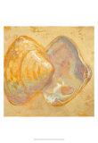 Shoreline Shells II Kunstdrucke von Lorraine Vail