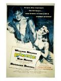 Picnic, William Holden, Kim Novak, 1955 写真