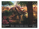 1993 Dawn on the Delta Poster di  National Geographic Maps