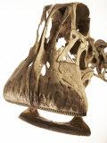 A cast of a Nigersaurus dinosaur Reproduction photographique par Ira Block