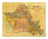Oahu, Hawaiian Islands, c.1899 Posters av T. D. Beasley