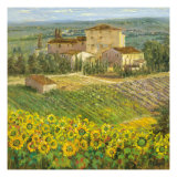 Provencal Village III Premium Giclee Print by Michael Longo