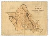 Oahu, Hawaiian Islands, c.1881 Posters