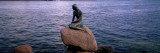 Little Mermaid Statue on Waterfront Copenhagen Denmark Photographic Print by  Panoramic Images