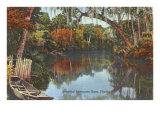 Suwannee-Fluss, Florida Poster