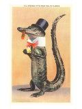 Alligator in Top Hat Prints