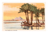 Pyramids from across the Nile, Palms, Camels, Egypt Prints