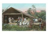 Orange Packing Hut, Florida Prints