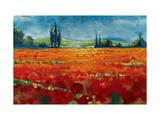 Spring Meadows II Premium Giclee Print by Selina Werbelow