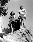 Tarzan the Ape Man Photo
