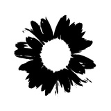 Black And White Abstract Daisy Art by Ruth Palmer