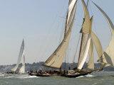 Mariette under Sail, Solent Race, British Classic Yacht Club Regatta, Cowes Classic Week, 2008 Stampa fotografica di Rick Tomlinson