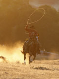 Cowboy Galloping While Swinging a Rope Lassoo at Sunset, Flitner Ranch, Shell, Wyoming, USA Reproduction photographique par Carol Walker