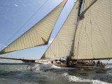 Mariquita under Sail, Solent Race, British Classic Yacht Club Regatta, Cowes Classic Week, 2008 Photographic Print by Rick Tomlinson