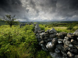 Dark Storm Clouds Above Stone Wall Near Combestone Tor, Devon, Dartmoor Np, UK 写真プリント : ロス・ホディノット