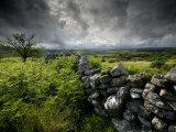 Dark Storm Clouds Above Stone Wall Near Combestone Tor, Devon, Dartmoor Np, UK Photographic Print by Ross Hoddinott
