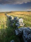 Dry Stone Wall and Moorland Grassland, Late Evening Light, Dartmoor Np, Devon, Uk. September 2008 Photographic Print by Ross Hoddinott