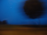 Blurred Road with Tree Scenery Posters by Philippe Lejeaille