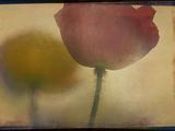 Close up of Flower Stem Posters av Mia Friedrich