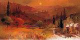 Romantic Tuscany II Konst av Willem Haenraets