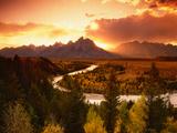 Teton Range at Sunset, Grand Teton National Park, Wyoming, USA Posters av Adam Jones