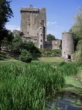 Blarney Castle, County Cork, Munster, Eire (Republic of Ireland) Posters av J Lightfoot