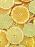 Citrus Slices. Lemon, Lime, Orange, Grapefruit and Tangerine Valokuvavedos tekijänä Wally Eberhart