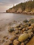 Dawn at Otter Cliffs, Acadia National Park, Maine Fotografie-Druck von Gustav W. Verderber