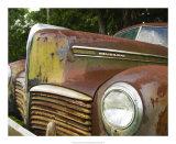 Rusty Hudson II Giclee Print by Danny Head