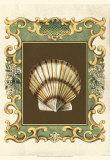 Mermaid's Shells IV Poster by Chariklia Zarris