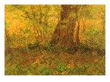 Dense Undergrowth, 1887 Reproduction procédé giclée par Vincent van Gogh