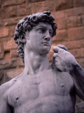 Michelangelo's David, Piazza Della Signoria, Florence, Tuscany, Italy, Europe Reproduction photographique par Patrick Dieudonne