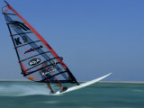 Windsurfing at Speed, Red Sea, Egypt, North Africa, Africa Photographic Print by Dominic Harcourt-webster