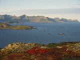 Island of Senja Viewed from Sommeroy, Near Tromso, Arctic Norway, Scandinavia, Europe Photographic Print by Dominic Harcourt-webster