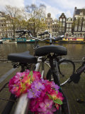 Flower Chain Holding Two Bicycles Together, Amsterdam, Netherlands, Europe Photographic Print by Amanda Hall