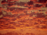 Red and Orange Clouds at Sunset in South Africa, Africa Photographic Print by Dominic Harcourt-webster