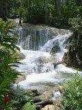 Dunns River Falls, Ocho Rios, Jamaica, West Indies, Caribbean, Central America Fotografisk trykk av Harding Robert