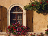 Window with Shutters and Window Box, Italy, Europe Photographic Print by Hart Kim