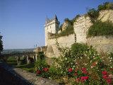 Chateau De Chinon, Indre-et-Loire, Loire Valley, France, Europe Fotografisk trykk av Harding Robert