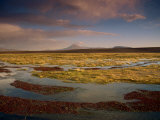 Landscape in the Isluga Area of the Atacama Desert, Chile, South America Photographic Print by Mcleod Rob