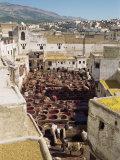 Tanneries, Fez, Morocco, North Africa, Africa Fotografisk trykk av Harding Robert
