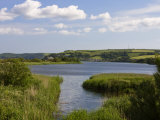 Slapton Ley, South Devon, England, United Kingdom, Europe Reproduction photographique par Rainford Roy