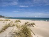 Bolonia Beach, Costa De La Luz, Andalucia, Spain, Europe Fotografisk trykk av Miller John