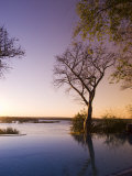 River Club Lodge, Sunset on Zambesi River, Zambia, Africa Photographic Print by Pitamitz Sergio