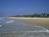 Colva Beach, Goa, India Fotografisk trykk av Pate Jenny