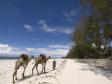 Diani Beach, Near Mombasa, Kenya, East Africa, Africa Photographic Print by Pitamitz Sergio