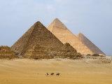 Pyramids of Giza, Giza, UNESCO World Heritage Site, Near Cairo, Egypt, North Africa, Africa Fotografie-Druck von Schlenker Jochen