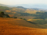 View across Agricultural Landscape at Sunrise, Volterra, Tuscany, Italy, Europe Photographic Print by Tomlinson Ruth