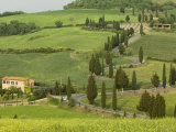 Road from Pienza to Montepulciano, Monticchiello, Val D'Orcia, Siena Province, Tuscany, Italy Photographic Print by Pitamitz Sergio