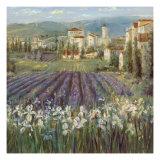 Provencal Village Premium Giclee-trykk av Michael Longo